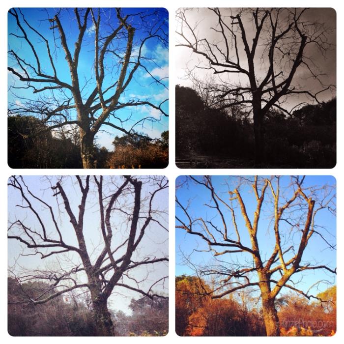 Photo 2-24-2014, 10 56 32 PM